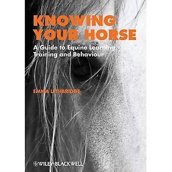 Znając twój koń: Przewodnik do nauki koni, szkolenie i zachowania