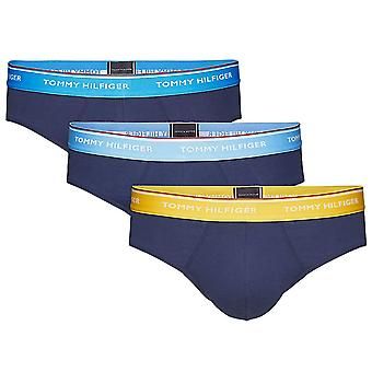 Tommy Hilfiger Premium Essential Stretch Cotton 3-Pack Brief, Ethereal Blue / Freesia / Hawain Ocean , Large