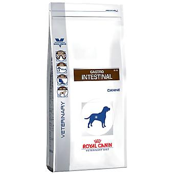 Royal Canin Gastro Intestinal 100gr (Cats , Cat Food , Wet Food)