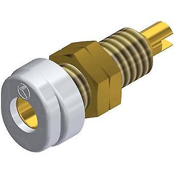 SKS Hirschmann BUG 10 Au Jack socket Socket, vertical vertical Pin diameter: 4 mm White 1 pc(s)