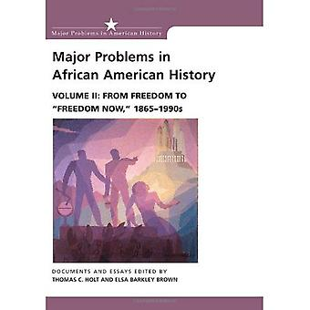Major Problems in African American History: From Freedom to Freedom Now, 1865-1990s v. 2 (Major Problems in American History Series)