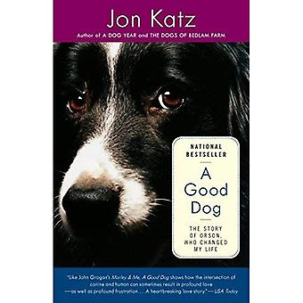 Good Dog, A: The Story of Orson, Who Changed My Life