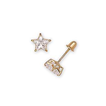 14k Yellow Gold 6x6mm Star Cubic Zirconia Screw-Back Earrings
