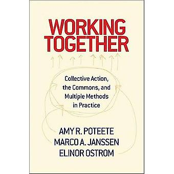 Working Together by Amy R. Poteete & Marco A. Janssen & Elinor Ostrom