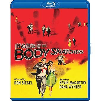 Invasion av Body Snatchers (1956) [BLU-RAY] USA import