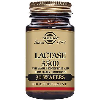Solgar Lactase 3500 - 30 Chewable Tablets (Vitamins & supplements , Enzymes)