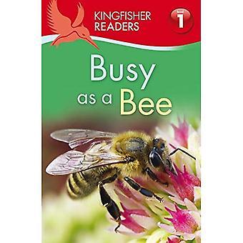 Kingfisher läsare: Upptagen som ett bi (nivå 1: börjat läsa) (kungsfiskare läsare nivå 1)