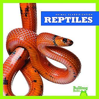 Reptiles (Animal Classification)