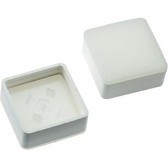 Switch cap White Mentor 2271.1004 1 pc(s)