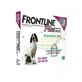Frontline Plus Spot på store hund 20-40kg 3 pipetter