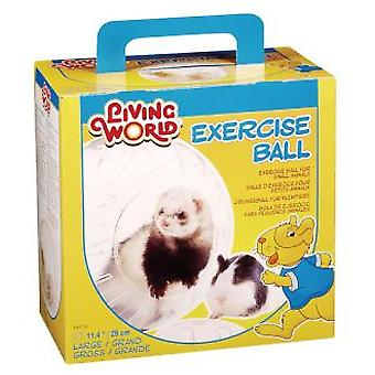 Living World L.W. EXERCISE BALL FOR FERRETS, LARGE