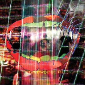 Centipede Hz by Animal Collective