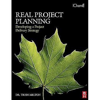 Real Project Planning: Developing a Project Delivery Strategy (Project Management Toolkit)