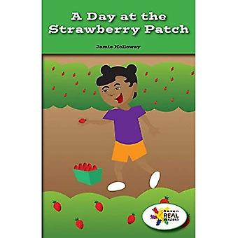 A Day at the Strawberry Patch (Rosen Real Readers: Stem and Steam Collection)