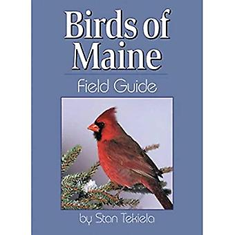 Birds of Maine Field Guide (unsere Natur Field Guides)