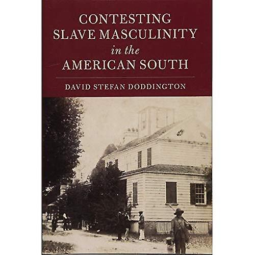 Contesting Slave Masculinity in the American South (Cambridge Studies on the American South)