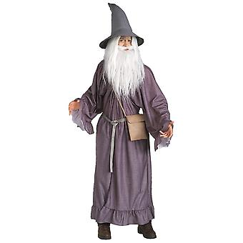 Gandalf The Lord Of The Rings Wizard Sorcerer Merlin Dress Up Adult Mens Costume
