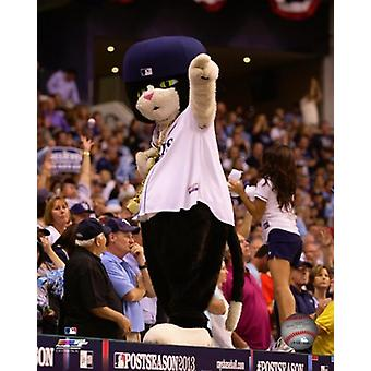 DJ Kitty Tampa Bay Rays mascotte Photo imprimable (8 x 10)