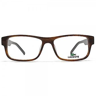 Lacoste L2660 Glasses In Brown Horn