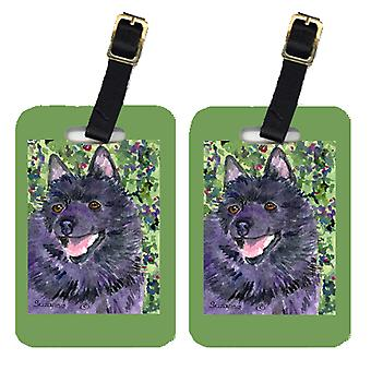 Carolines Treasures  SS8822BT Pair of 2 Schipperke Luggage Tags