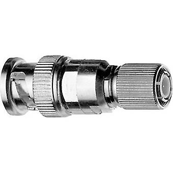 Coax adapter BNC plug - 1.5/5.6 plug Telegärtner J01008A0810 1 pc(s)