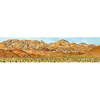 Bushes in a desert with mountain range in the background Death Valley Death Valley National Park California USA Poster Print
