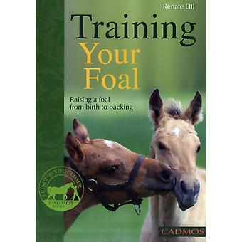 Training Your Foal: Raising a Foal from Birth to Backing (Paperback) by Ettl Renate