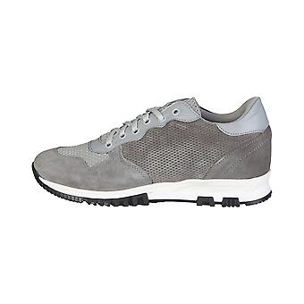 Made in Italia Sneakers hommes gris
