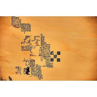 Satellite view of patterns of circular fields in New Valley Governorate Egypt Poster Print by Panoramic Images