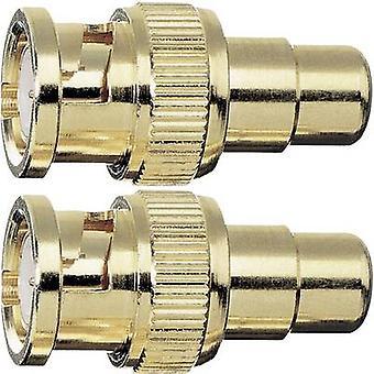 Oehlbach RCA / BNC Adapter [1 x RCA-uttag (phono) - 1 x BNC plugg] guld guldpläterade kontakter