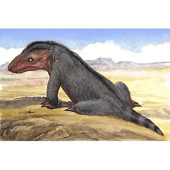 Illustration of a Moschowhaitsia vjuschkovi from prehistoric times Poster Print