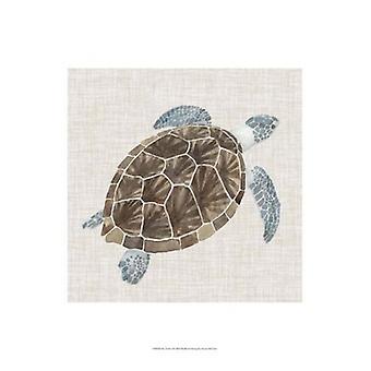 Sea Turtle jag affisch Skriv av Naomi McCavitt (13 x 19)