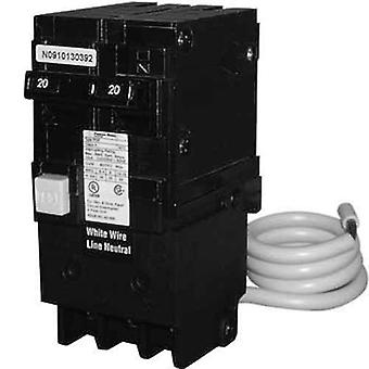 Pentair PA220GF grond schuld Circuit onderbreker 2-polig GFCI