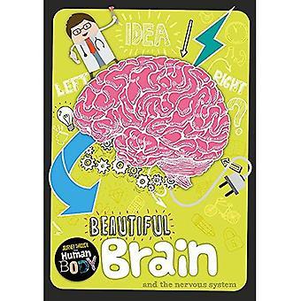 Mooie hersenen (reis door het menselijk lichaam)