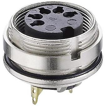 DIN connector Socket, vertical vertical Number of pins: 8 Silver Lumberg 0305 08-1 1 pc(s)
