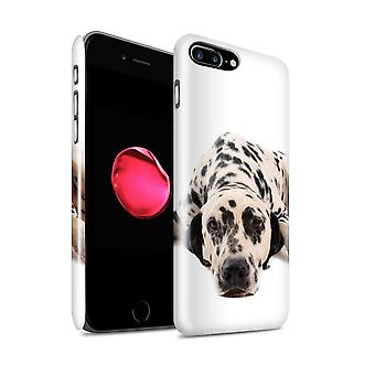 STUFF4 Glanz zurück Snap-On Handy Hardcase für Apple iPhone 7 Plus / dalmatinische Design / Hund Rassen Sammlung