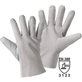 worky 1700 Leather glove NAPPA Nappa leather Size (gloves): 8, M