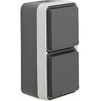 Berker Twin socket W.1 (surface-mounted) Grey, Light grey 47703525