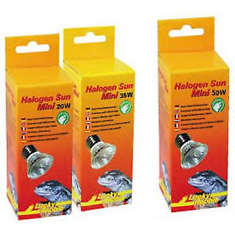 Lucky Reptile Reptile Halogen Sun Mini (Reptiles , Lighting , Light Bulbs)
