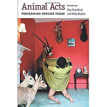 Dierlijke Acts: Uitvoeren van soorten vandaag (kritische voorstellingen)
