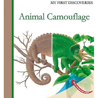 Animal Camouflage (My First Discoveries)
