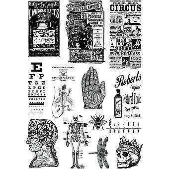 Creative expressions Andy Skinner Alchemy plus transferts de médias mixtes