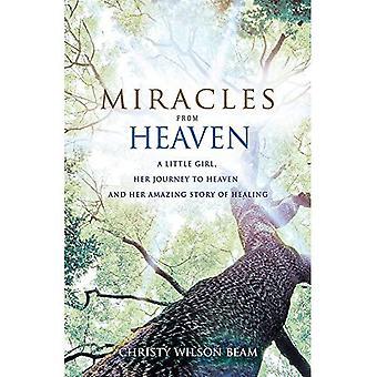 Miracoli dal cielo: una bambina, il suo viaggio verso il cielo e la sua incredibile storia di guarigione