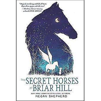 Les chevaux Secret de Briar Hill