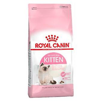 Royal Canin Kitten 36 (Cats , Cat Food , Dry Food)
