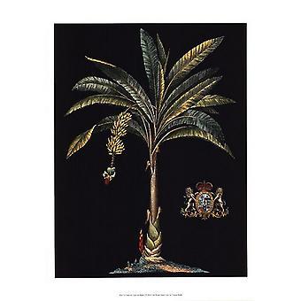 Palm & Crest on Black I Poster Print by Vision studio (13 x 19)