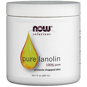 Now Foods Lanolin Pure 207 ml (Cosmetics , Body  , Moisturizers)