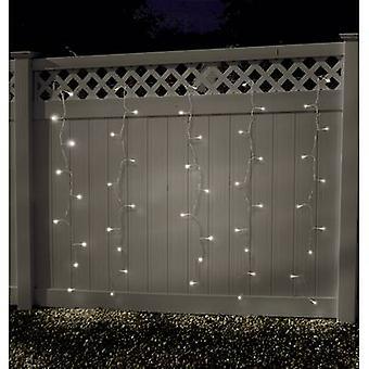 Curtain light (micro) Outside 24 V 100 LED Warm white (W x H) 180 cm x 135 cm