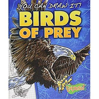 Birds of Prey (You Can Draw It!)