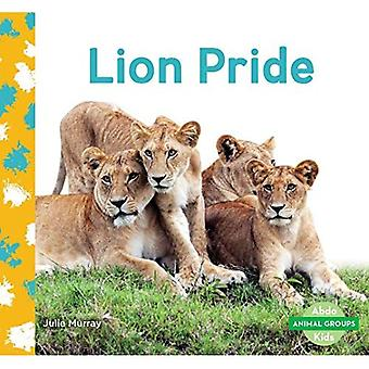 Lion Pride (Animal Groups)